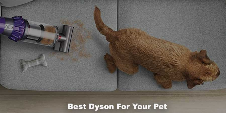 best dyson for pet hair
